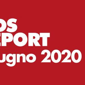 Monitoraggio GDS Brico&Garden Giugno 2020. L'analisi